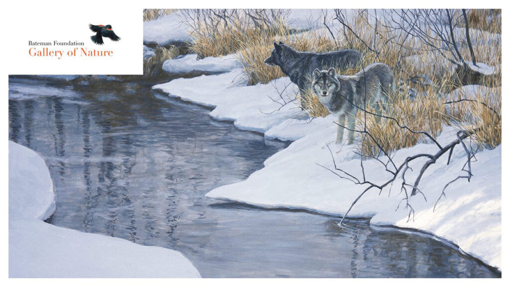 A painting of two wolves by a creek.