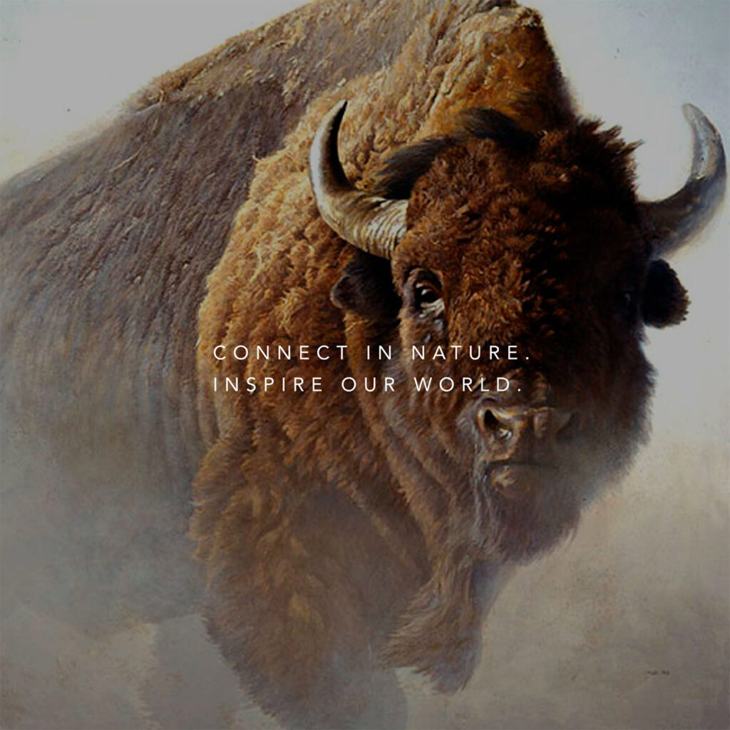 A painting of a buffalo with the Bateman Foundation tagline words (Connect in nature. Inspire our world.) overtop.