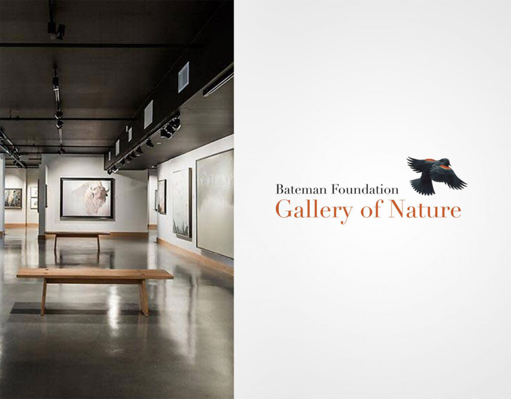 The Bateman Foundation Gallery of Nature.
